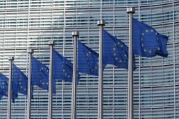 EU European Union flags lined up