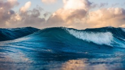 Stock image of ocean with wave to represent release wave